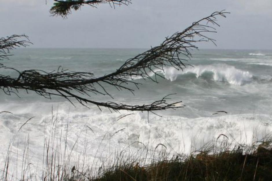 Pomorskie bez prądu: z powodu silnego wiatru część regionu odcięta od elektryczności
