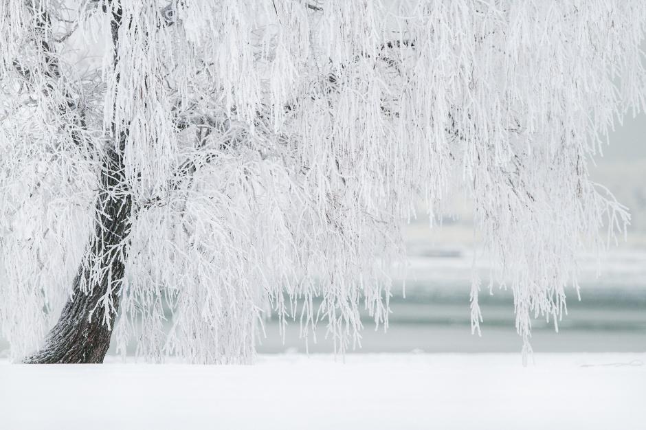 Śnieżyce w Polsce, Śląsk: Wielu mieszkańców bez prądu