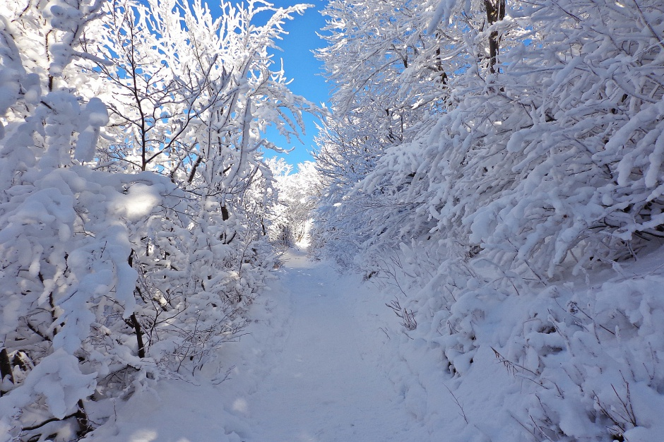 Bieszczady: Trudne warunki turystyczne i zagrożenie lawinowe w górach