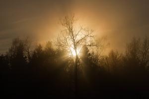 Jakość powietrza na Mazowszu poprawia się
