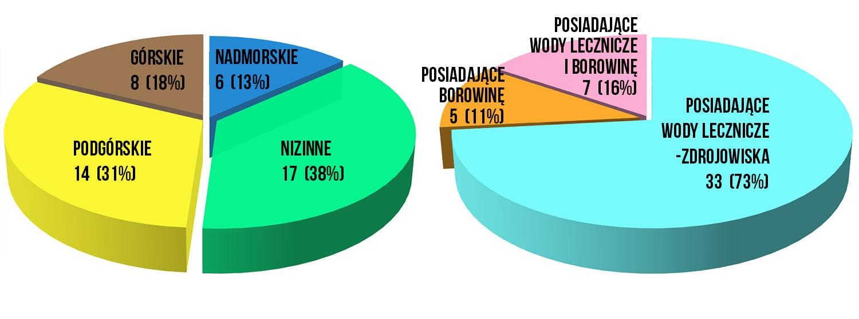 Status uzdrowiska ma w Polsce 45 miejscowości, które dzielą się na poszczególne kategorie. (fot. NIK)
