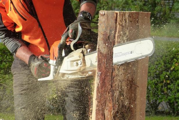 Wycinka drzew: Pod budowę domu bez pozwolenia, ale pod stodołę lub oborę już nie