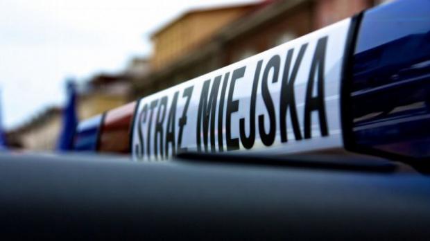 Strażnicy miejscy poznają historię Łodzi, jej tradycje i zabytki