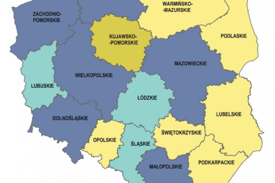 Mikroprzedsiębiorstwa w Polsce: Mazowsze liderem, Opolskie na szarym końcu