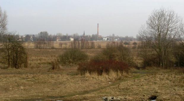 Borowina znajdująca się w Oborach nie ma właściwości leczniczych (fot.konstancin24.eu)