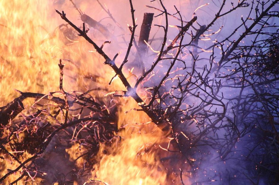 Seria pożarów związanych z wypalaniem traw
