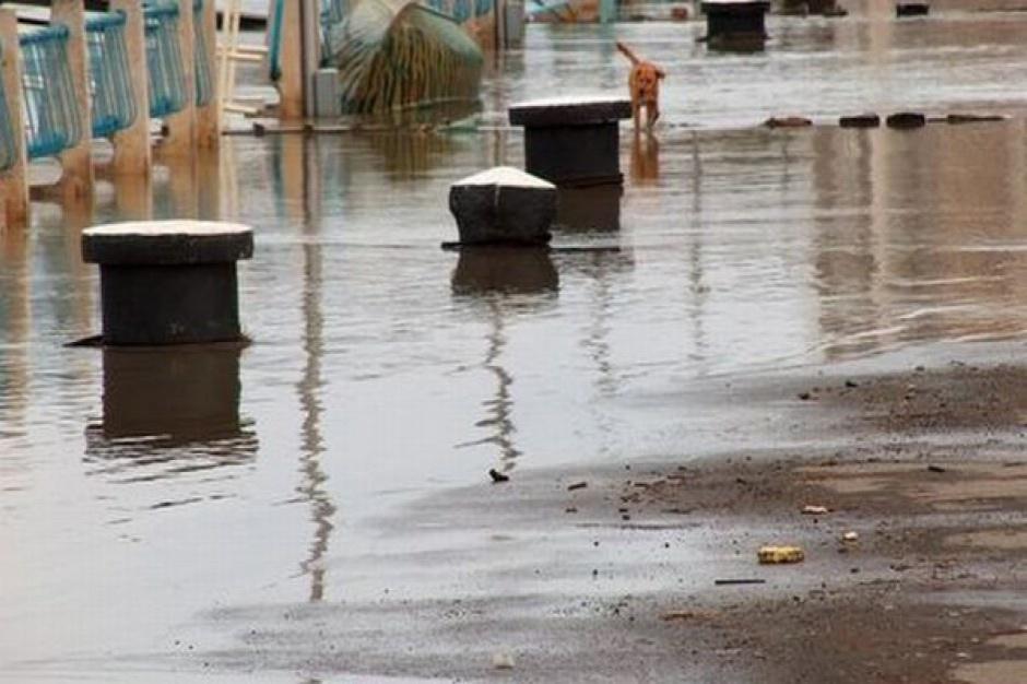 Podkarpackie: Rozdano promesy na usuwanie skutków klęsk żywiołowych