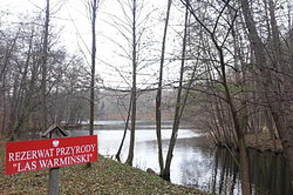 """Olsztyn: Protest przeciwko polowaniom w rezerwacie """"Las Warmiński"""""""