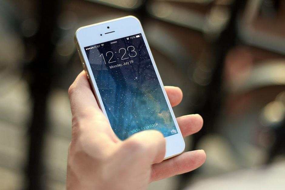 Warszawa: Aplikacja w telefonie ma pomóc w wybraniu miejsca posadzenia drzewa