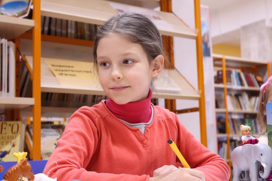 Szczecin z nową siecią szkół