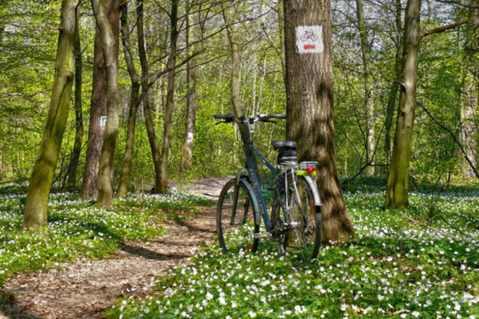 80 km ścieżek rowerowych wokół Legionowa