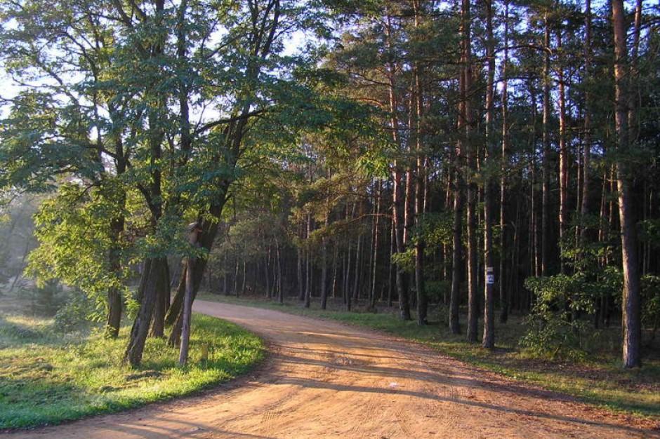 NFOŚiGW: 8 mln zł dotacji na parki narodowe oraz zabytkowe parki i ogrody