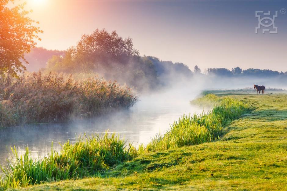 Zagospodarowanie rzeki Czerniejówki. Lublin chce poznać zdanie mieszkańców