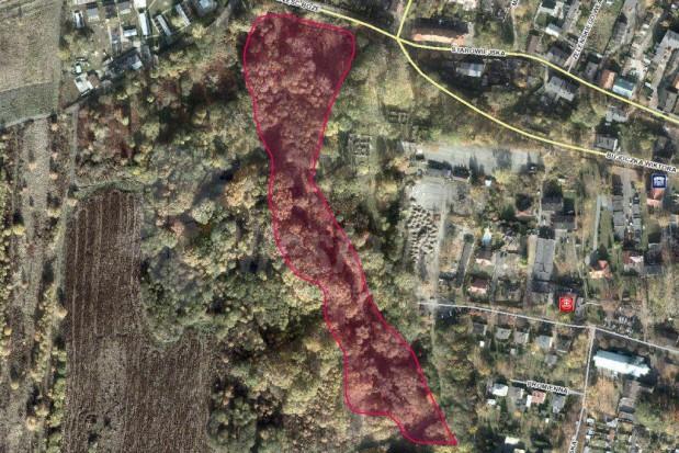 Ruda Śląska: Miasto stawia na rewitalizację terenów zielonych