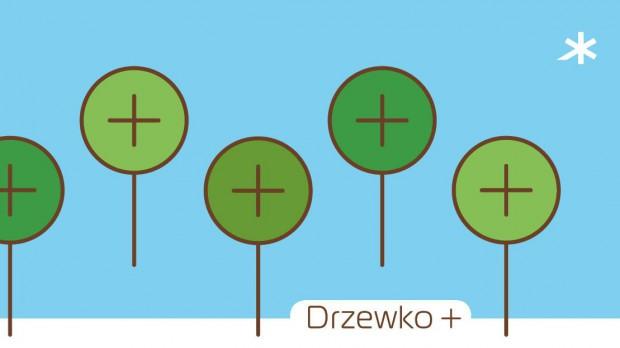 Poznaniacy posadzą 1000 drzew