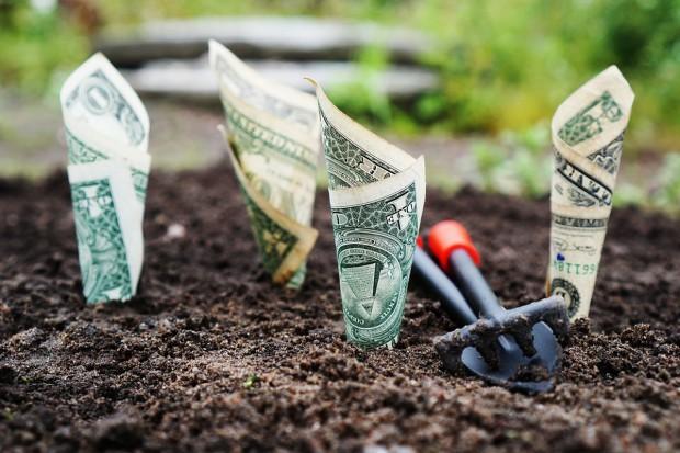 Nabór wniosków, restrukturyzacja małych gospodarstw: Jest problem z pozyskaniem unijnych pieniędzy