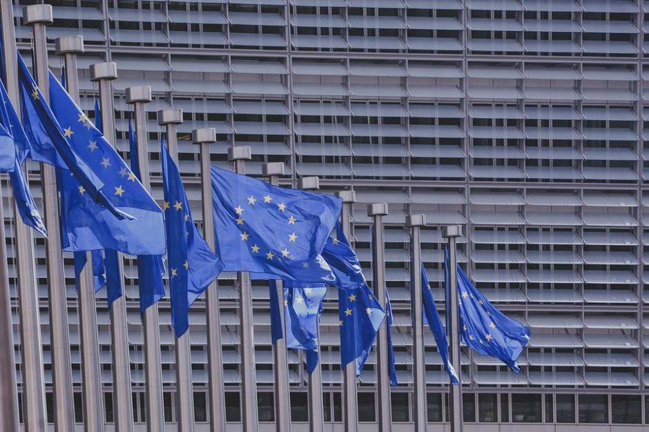 Sprawa Dużego Opola będzie przedstawiona w Parlamencie Europejskim