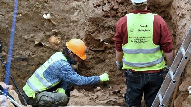 Poznań: Miejsce dawnej kolegiaty odkrywa historię. Archeolodzy zaskoczeni