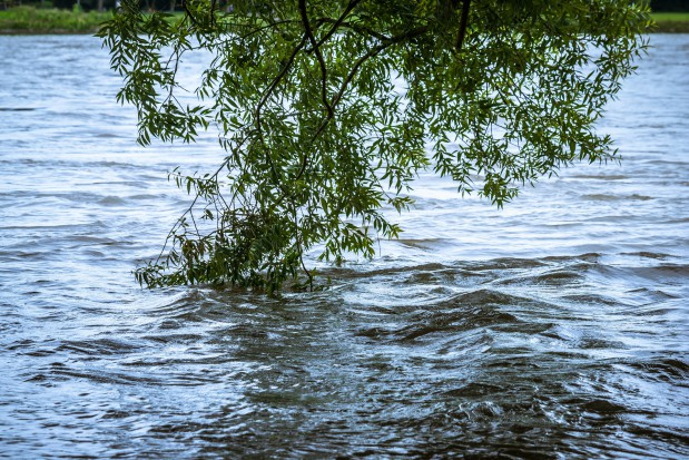 Lubuskie, Odra: Nie ma zagrożenia wystąpienia powodzi