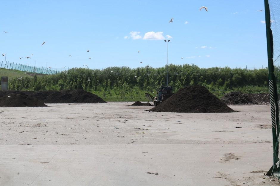 Gdańsk: Nie ma wykonawcy kompostowni dla Zakładu Utylizacji. Przetarg trzeba powtórzyć