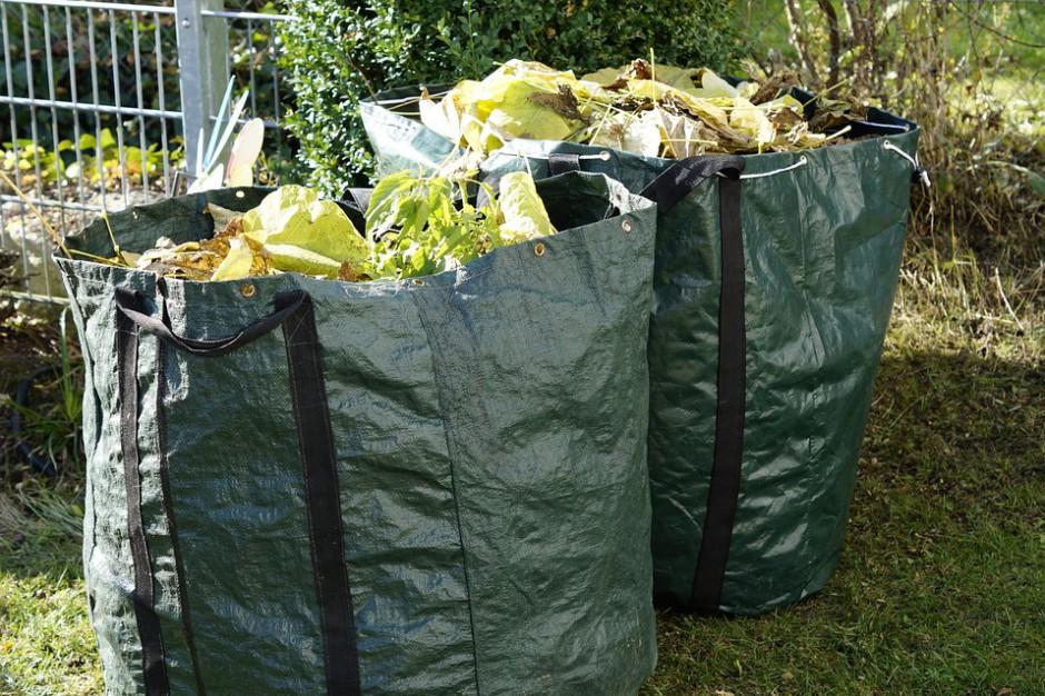 Lipowa: w 2017 r. bio odpady będą odbierane bez limitów