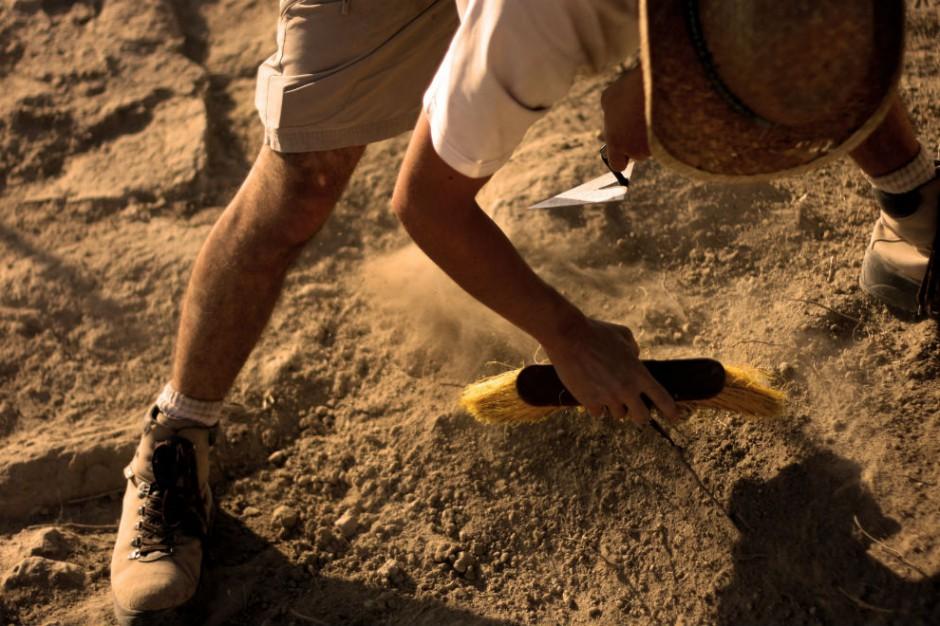 Unikatowe odkrycie na Podkarpaciu - osada sprzed ok. 2,5 tys. lat