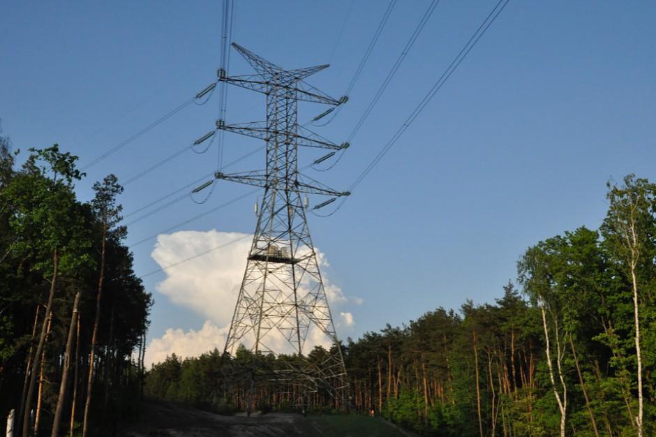 Japończycy pomogą zbudować największy w Polsce magazyn energii. Gdzie powstanie?