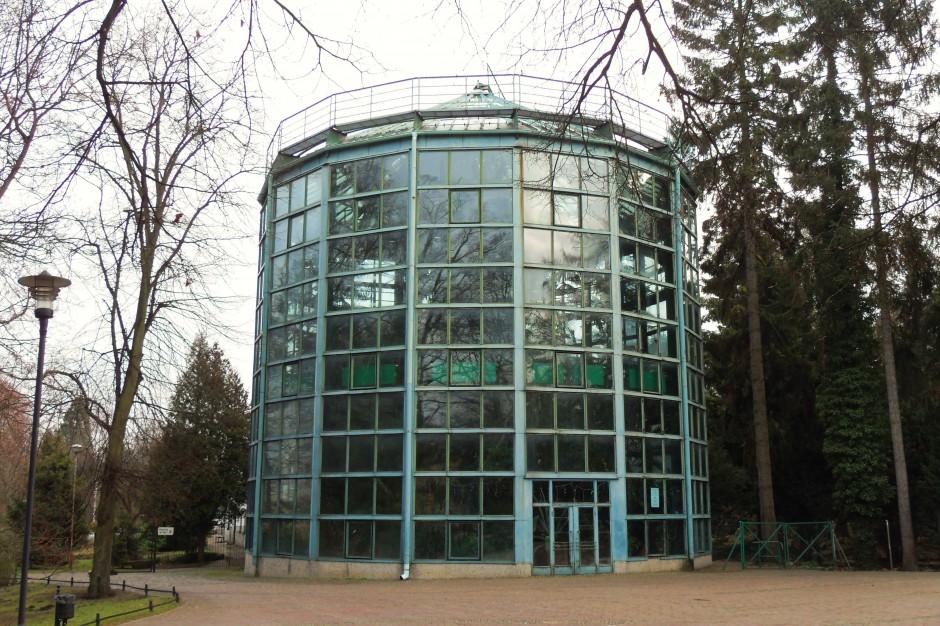 Gdańsk rozważa oferty przebudowy oliwskiej palmiarni