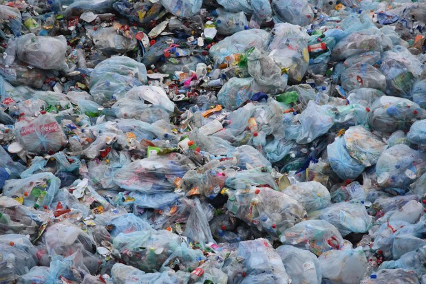 Gospodarka odpadami: Trzy lata od reformy śmieciowej, a tu śmieci usypują na wielką górę - Gospodarka komunalna