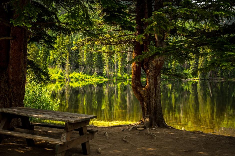 Zielona Góra: Powstanie Miejski Park Odkrywców