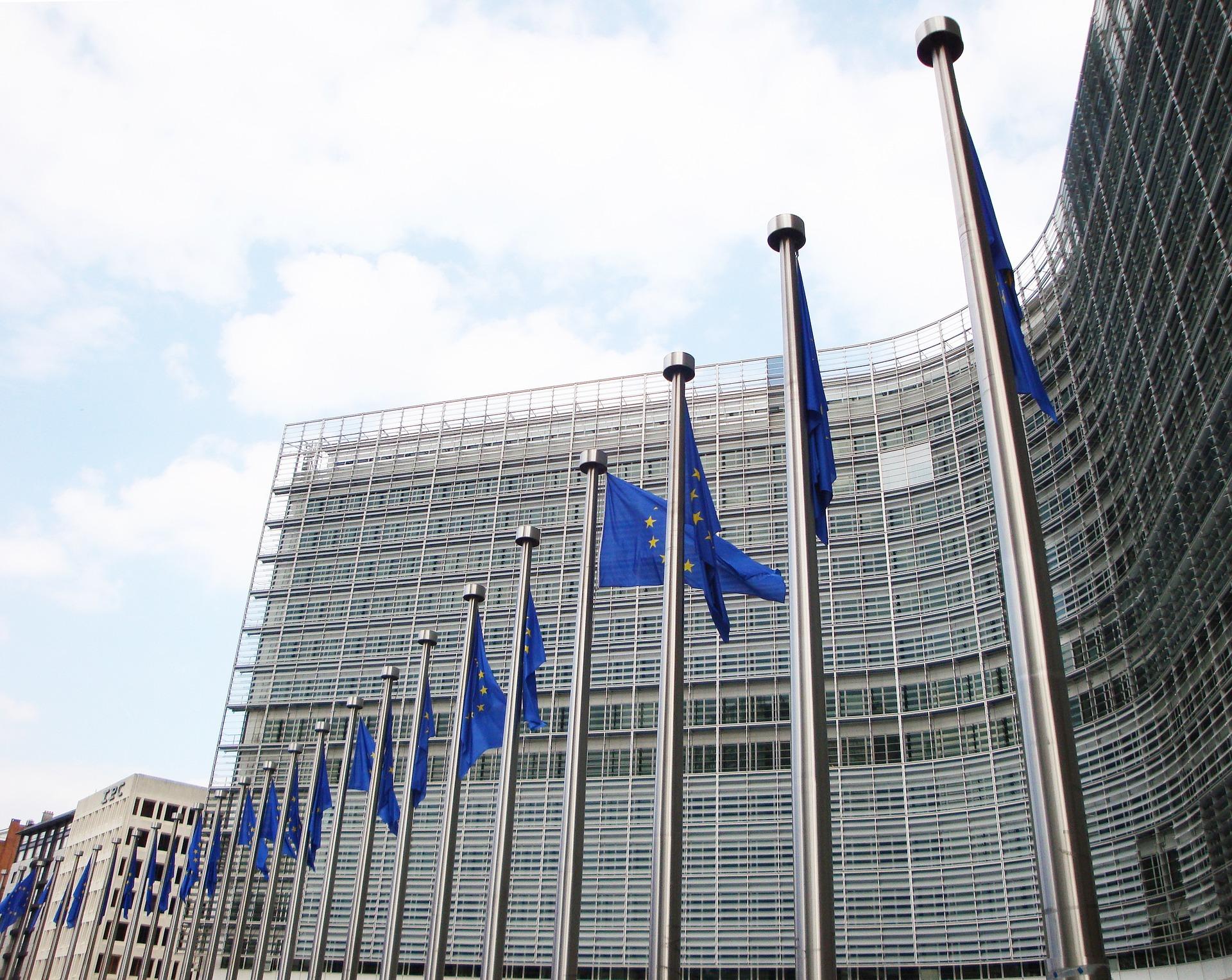 Komisja Europejska ma wystąpić o natychmiastowe zaprzestanie działań w Puszczy Białowieskiej do czasu rozstrzygnięcia sprawy (fot.pixabay)
