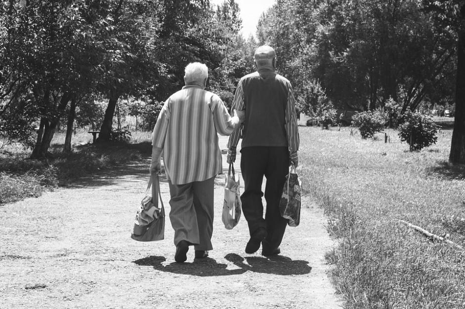 Katowice: Rusza program pomocy osobom starszym i ich opiekunom