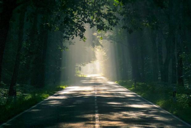 Program Budowy Dróg Krajowych: W woj. małopolskim powstanie ponad 220 km nowych dróg