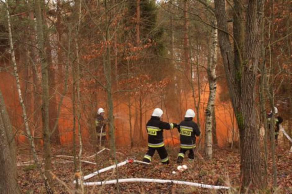 NIK sprawdziła jak nadleśnictwa zapobiegają katastrofom w lasach. Jest co poprawiać