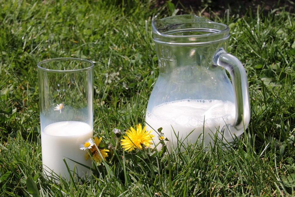 """Resort rolnictwa pracuje nad programem dla szkół """"mleko, owoce i warzywa"""". Już są negatywne opinie"""