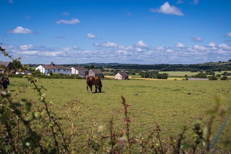 Scalenie gruntów rolnych. Jak Podkarpackie wydało największą dotację w kraju?