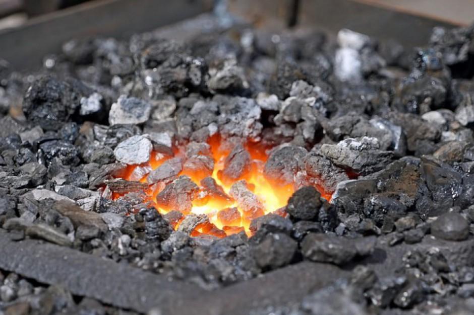 """Sprzedawcy węgla: """"Zmieńcie uchwały antysmogowe"""". Ekolodzy odpowiadają"""