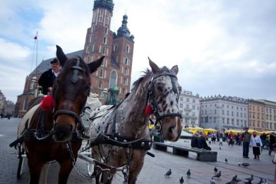 Na krakowskim Rynku znów zobaczymy dorożki. Zakaz odwołany
