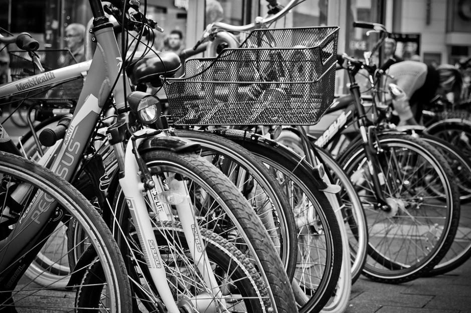 Łódzki rower miejski jednym z największych w Europie