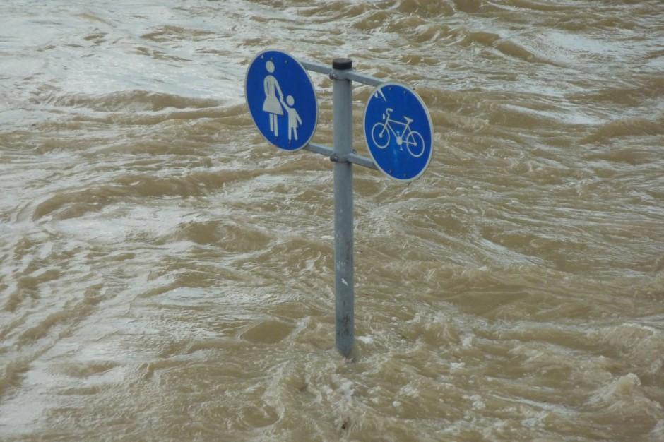Plany adaptacji do zmian klimatu: 44 największe miasta współpracują z resortem środowiska