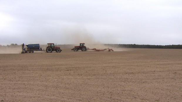 Klęski żywiołowe: 100 mln zł na pomoc dla rolników