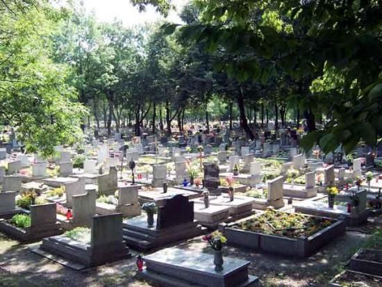 Mysłowice chcą wybudować cmentarz komunalny