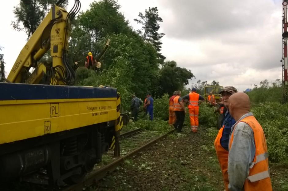 PKP PLK: Ruch pociągów wraca do normy. Największe utrudnienia na trasie Piła - Bydgoszcz