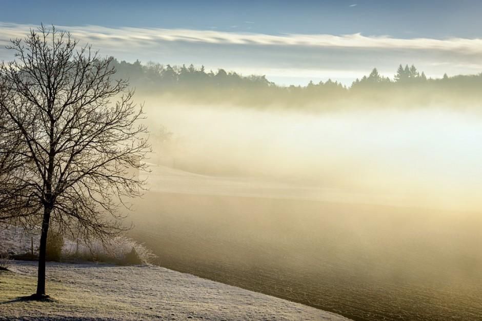 Zakopane walczy o czyste powietrze. Mieszkańcy mogą starać się o dotację na ogrzewanie ekologiczne