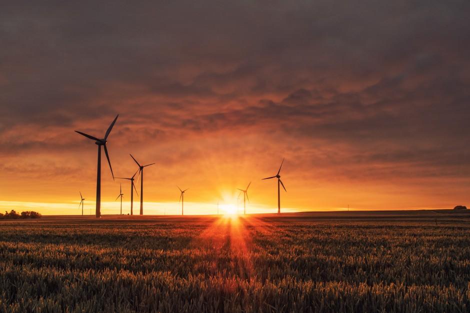 Farmy wiatrowe znów staną tuż obok domów?