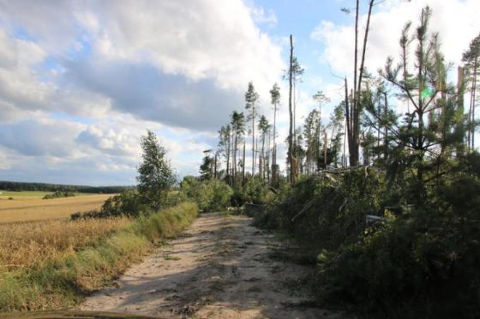 Wielkopolska: ogromne straty wśród rolników po burzach. Ucierpiało ponad 2,1 tys. gospodarstw