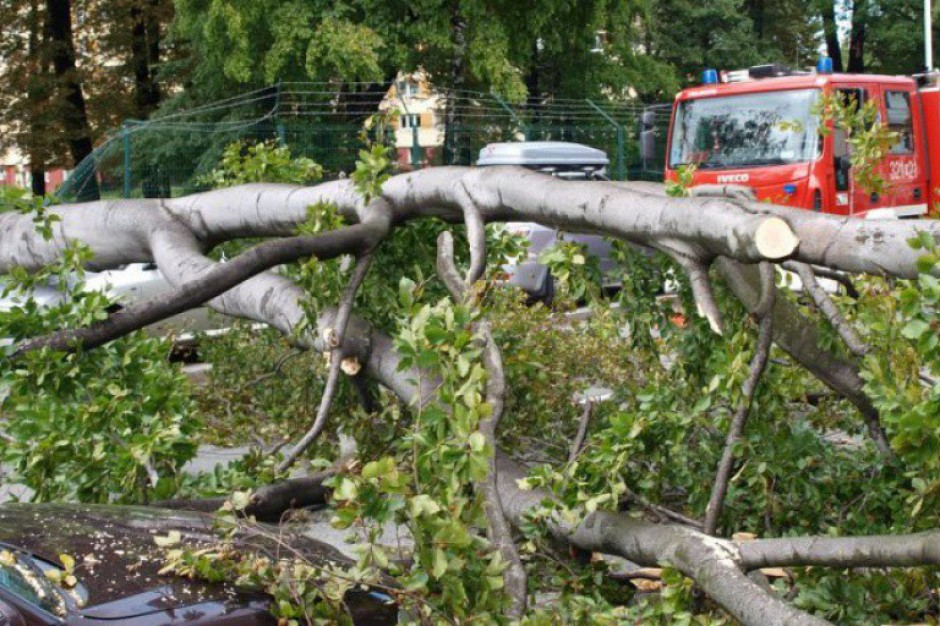 1128 interwencji straży związanych z silnym wiatrem