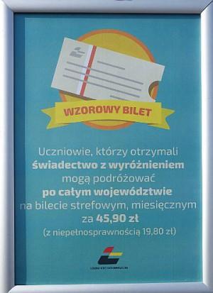 Wzorowy bilet (fot.umwł.pl)