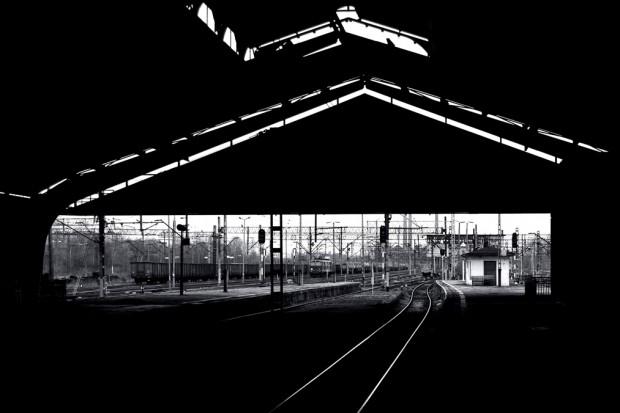Galeria_na_Poziomie, fot. Wojciech Sokolnicki