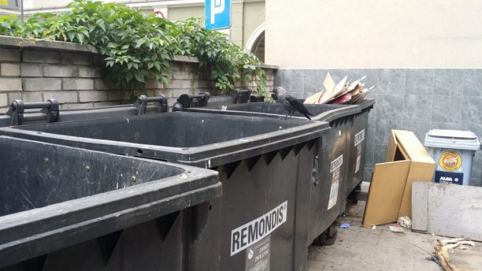 Gliwice: Podwyżki opłat za śmieci kością niezgody wśród radnych